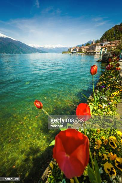 Town of Bellagio on Como Lake and Flowers, Italy