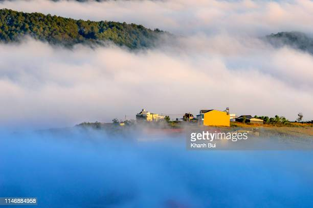 town of the mist