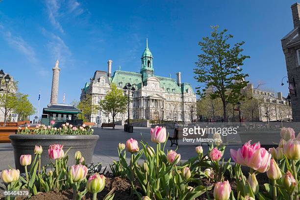 town square and place jacques cartier, old montreal, montreal, quebec, canada - ジャック カルティエ ストックフォトと画像