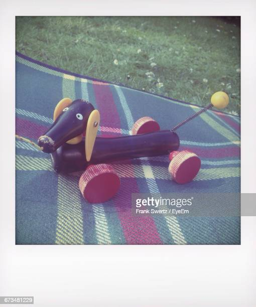 toy animal on carpet over grassy field - frank swertz stockfoto's en -beelden