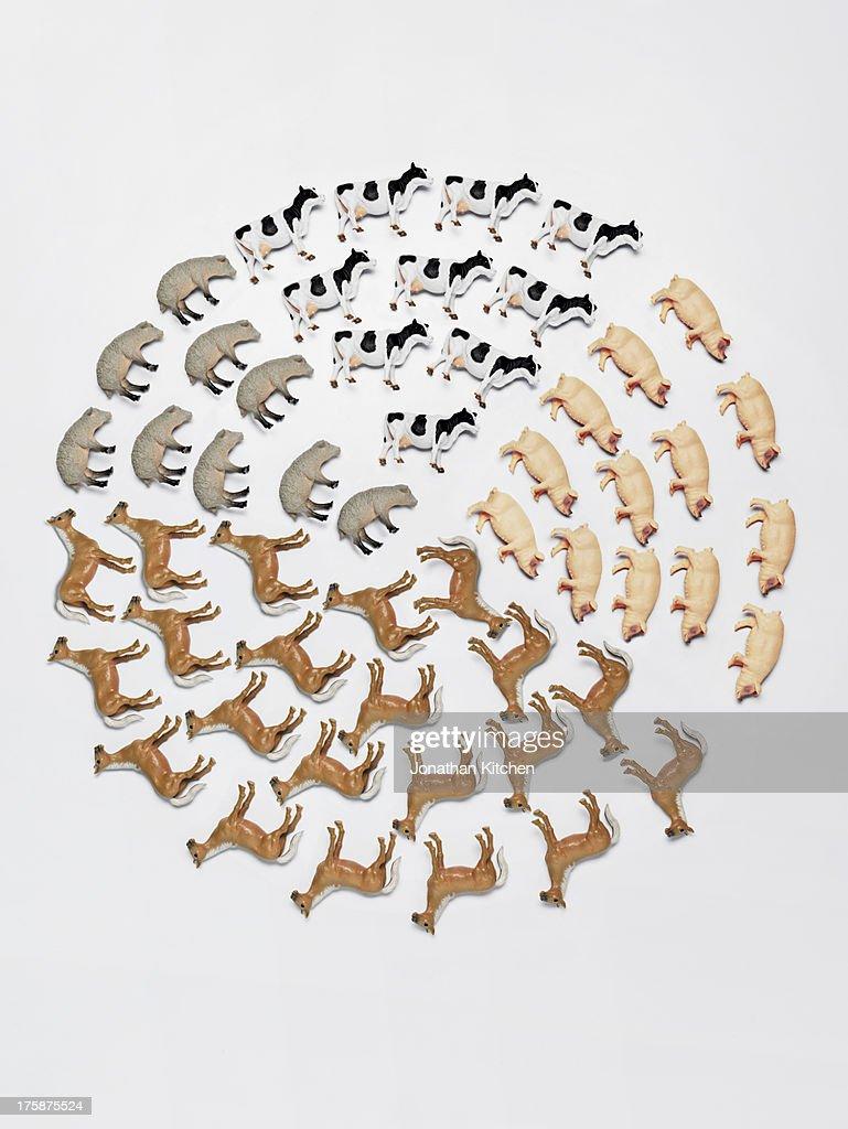 toy animal pie chart 2 : Stock Photo