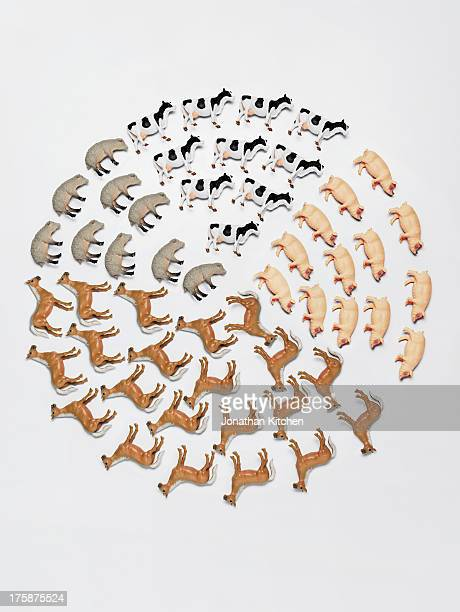 toy animal pie chart 2 - toy animal stock photos and pictures