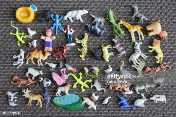 toy animals collection assorted on a carpet - rafael ben ari imagens e fotografias de stock