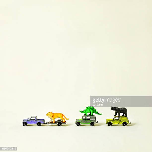 Toy animals riding on top of toy cars