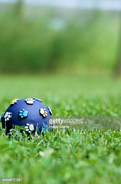 Toy ball for dog on grass