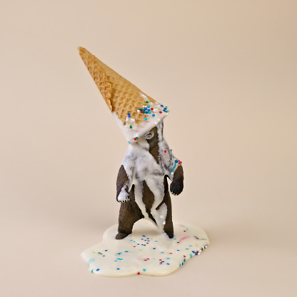 Toy Bear Wearing Melted Ice Cream Cone on Head - gettyimageskorea