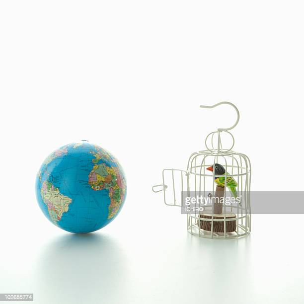 Toy bird in the cage and globe.