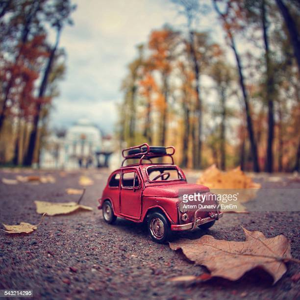 Toy Car And Fallen Autumn Leaves On Street