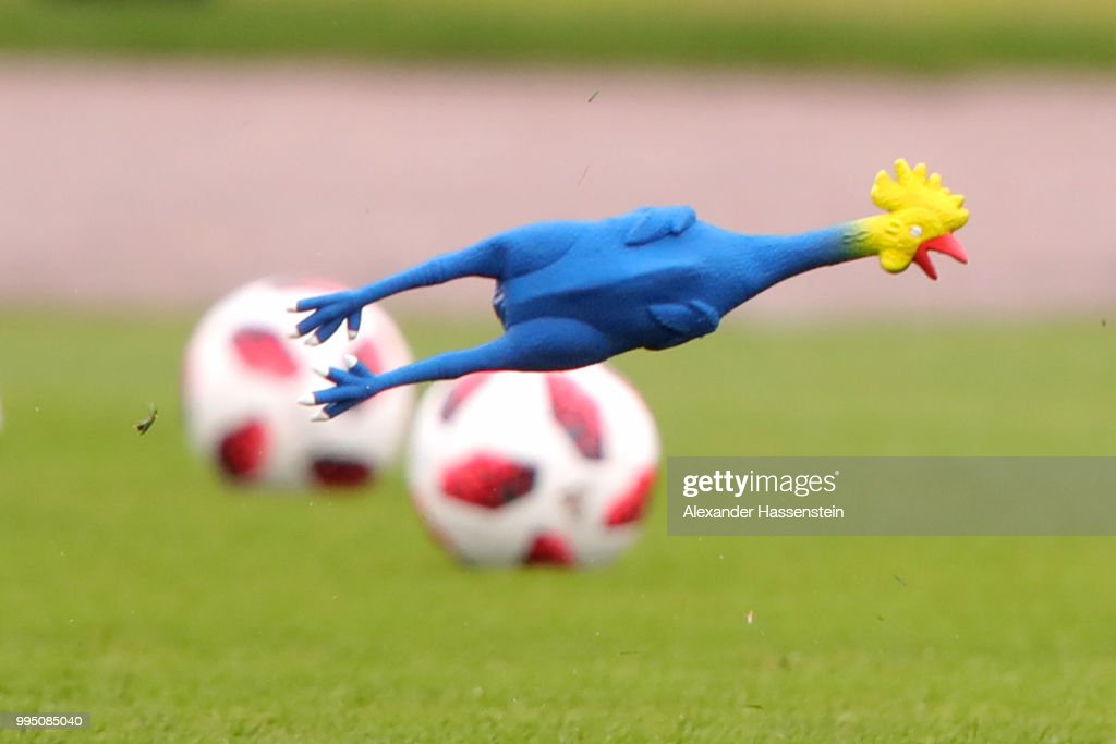 A toy chicken fly during the England training session on July 10, 2018 in Saint Petersburg, Russia.