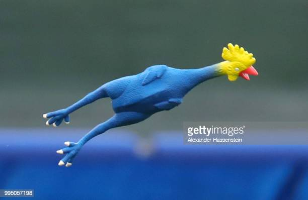 A toy chicken is seen during the England training session on July 10 2018 in Saint Petersburg Russia