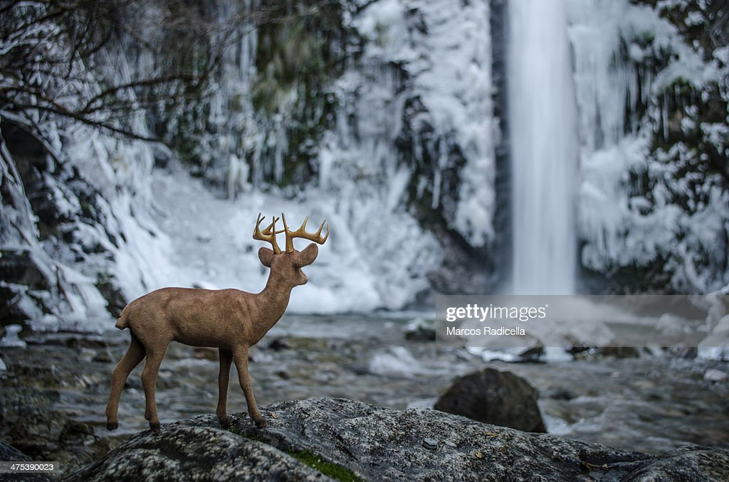 toy deer in frozen waterfall : Stock Photo