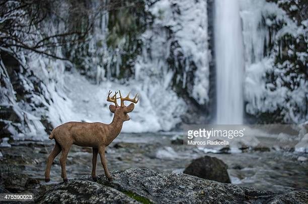 toy deer in frozen waterfall - radicella stock pictures, royalty-free photos & images