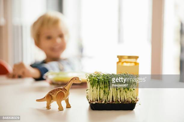 Toy dinosaur and box of cress on breakfast table