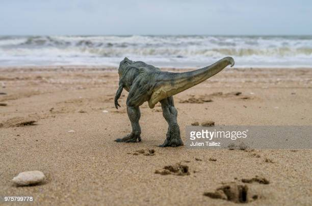 Toy dinosaur on beach