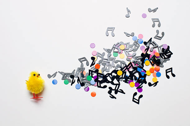 A Toy Easter Chick Next To A Group Of Musical Notes And Confetti Wall Art