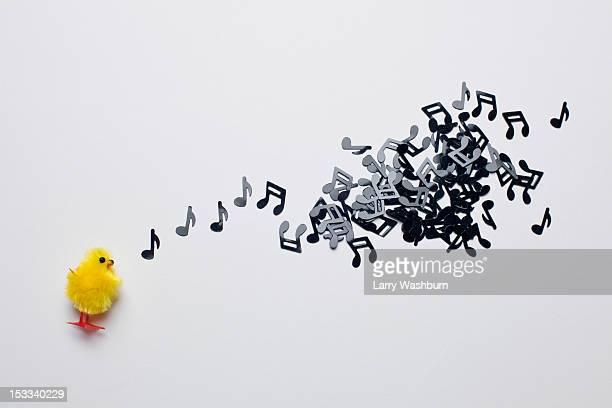 A toy Easter chick next to a group of musical notes