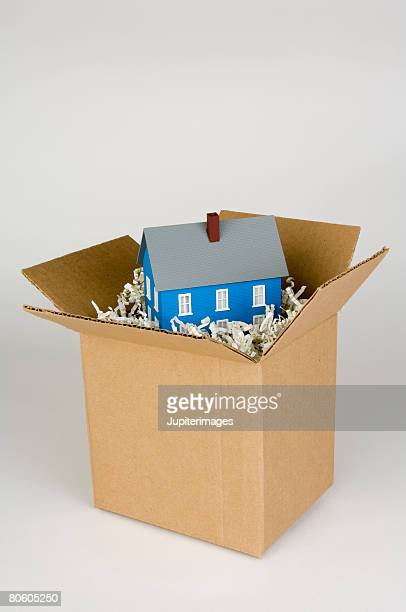 Toy house in cardboard box