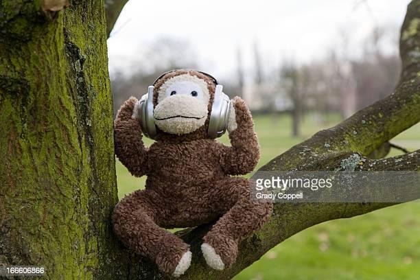 Toy monkey sitting in tree