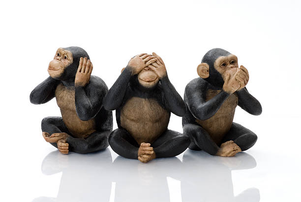 toy monkeys - see no evil stock pictures, royalty-free photos & images