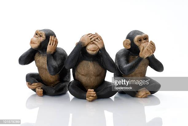 toy monkeys - primate stock pictures, royalty-free photos & images