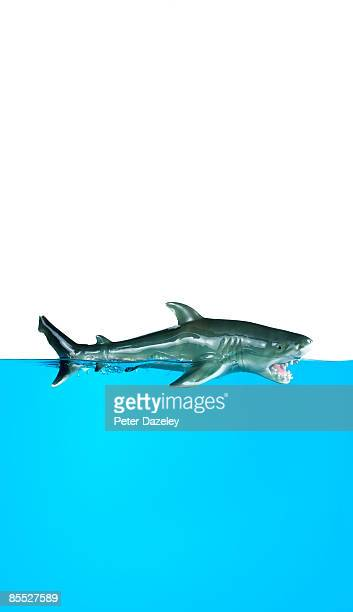 toy shark on blue water. - animal representation stock pictures, royalty-free photos & images
