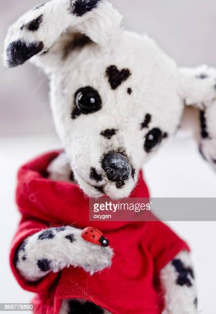 Toy Teddy Dog Dalmatian sitting on a red pillow