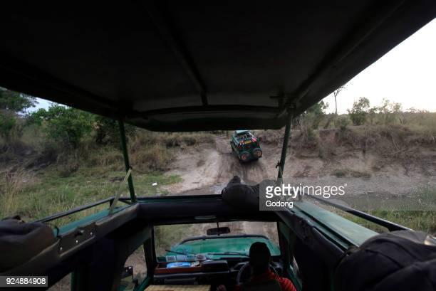 Toyota Land Cuiser Safari Masai Mara game reserve Kenya