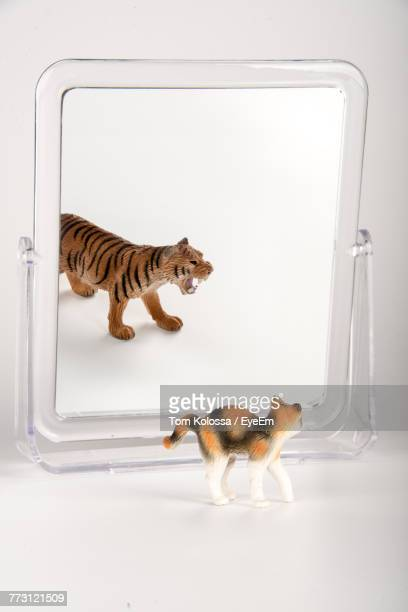 Toys With Mirror Over White Background