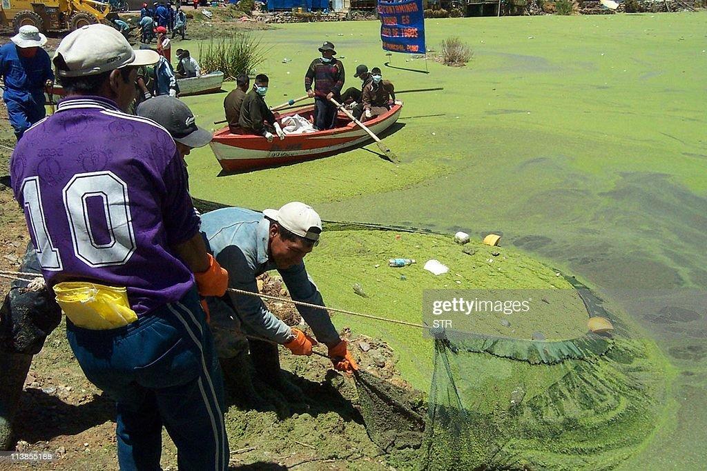 Trabajadores limpian las orillas del lag : News Photo