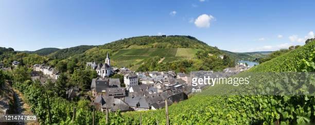 traben-trarbach (rhineland-palatinate, germany) - moseltal stock-fotos und bilder