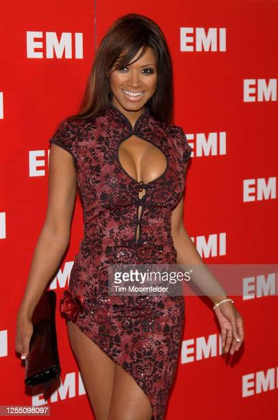 Traci Bingham attends the EMI Post Grammy party at the Los Angeles County Museum of Art on February 8, 2004 in Los Angeles, California