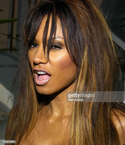 Traci Bingham during Femme Fatales Party for Fresh Faces 2004 at The Georgian Hotel in Santa Monica, California, United States.