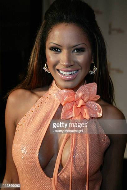 Traci Bingham during The 8th Annual International Press Academy Satellite Awards at St. Regis Hotel in Century City, California, United States.