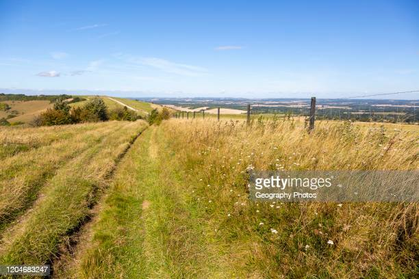 Track along top of chalk scarp escarpment slope of Inkpen Hill, at Walbury Camp, Berkshire, England, UK.