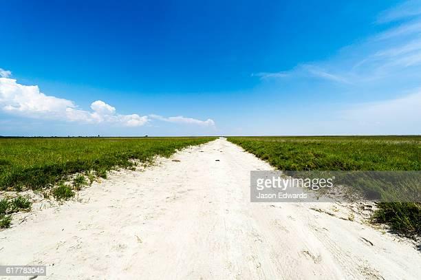 A track crossing a vast featureless salt pan.