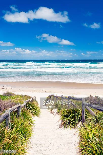 Track to Cave Beach, Booderee National Park, Jervi