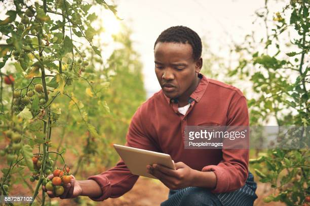 Tracking his crops with technology