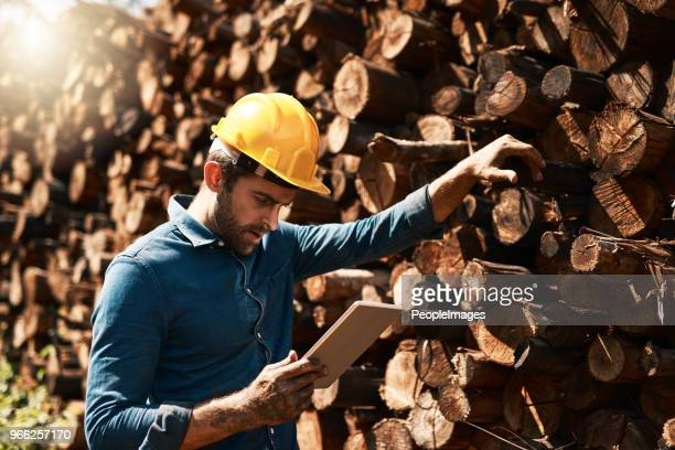 tracking his lumber deliveries - construction material stock pictures, royalty-free photos & images