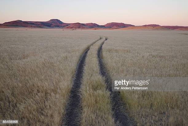 Tracks in Etosha National Park.