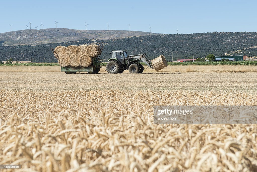 Tractor and straw bales : Stock Photo