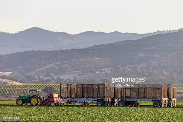 tractor and trailor at king city farm land, california - city of monterey california stock pictures, royalty-free photos & images