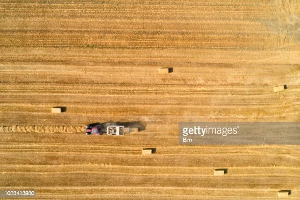 heno enfardado de tractor en el campo - heno fotografías e imágenes de stock