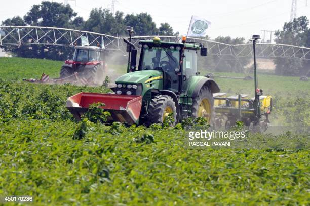 A tractor bearing a FNSEA flag of France's main agricultural union destroys plants of transgenic corn on the 11 hectares field of cereal farmer...