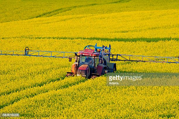 Tractor besproeit veld met koolzaad met pesticiden in de lente Tractor with crop sprayer spraying rapeseed with pesticides in spring