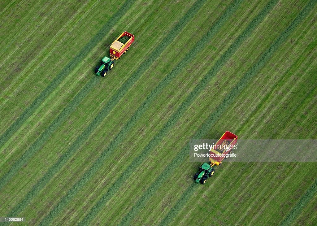 Tractor cutting grass : Foto de stock