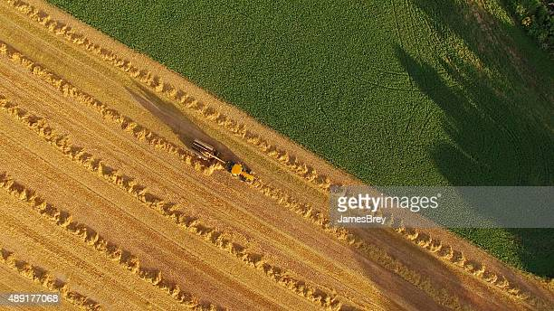 Tracteur agricole pittoresque Champ de foin, vue aérienne