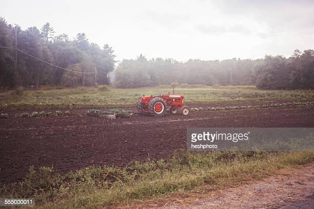 a tractor in a field - heshphoto stock-fotos und bilder