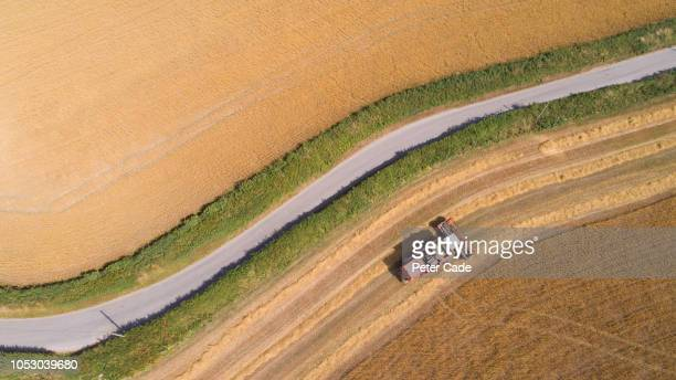 tractor in field cutting grass for hay - combine harvester stock pictures, royalty-free photos & images