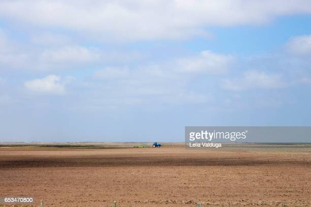tractor in the gaucho fields - rs - brazil - trabalhando stock photos and pictures