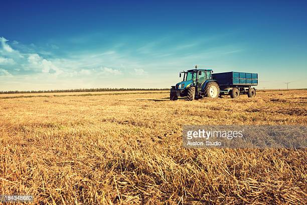 tractor in the stubble field - tractor stock pictures, royalty-free photos & images